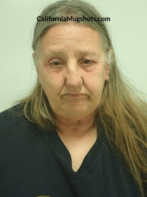 Arrest Photo of Judith Dianna Hotaling
