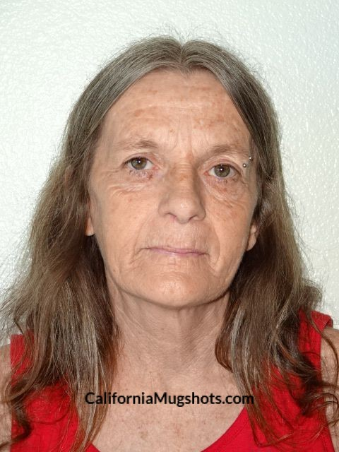 Arrest Photo of Brenda Ellen Laughridge