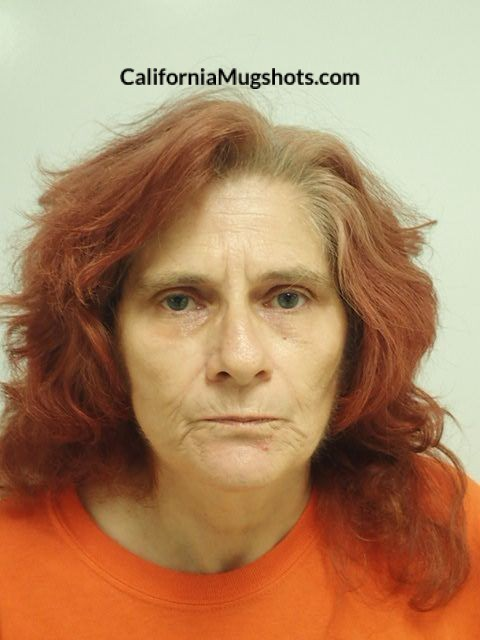 Susanna Lee Damico arrested in Lake County,CA