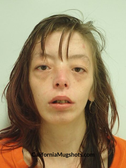 Nicole Louise Brink arrested in Lake County,CA