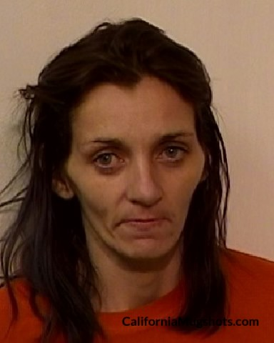 Arrest Photo of Wendy Ray Peirce