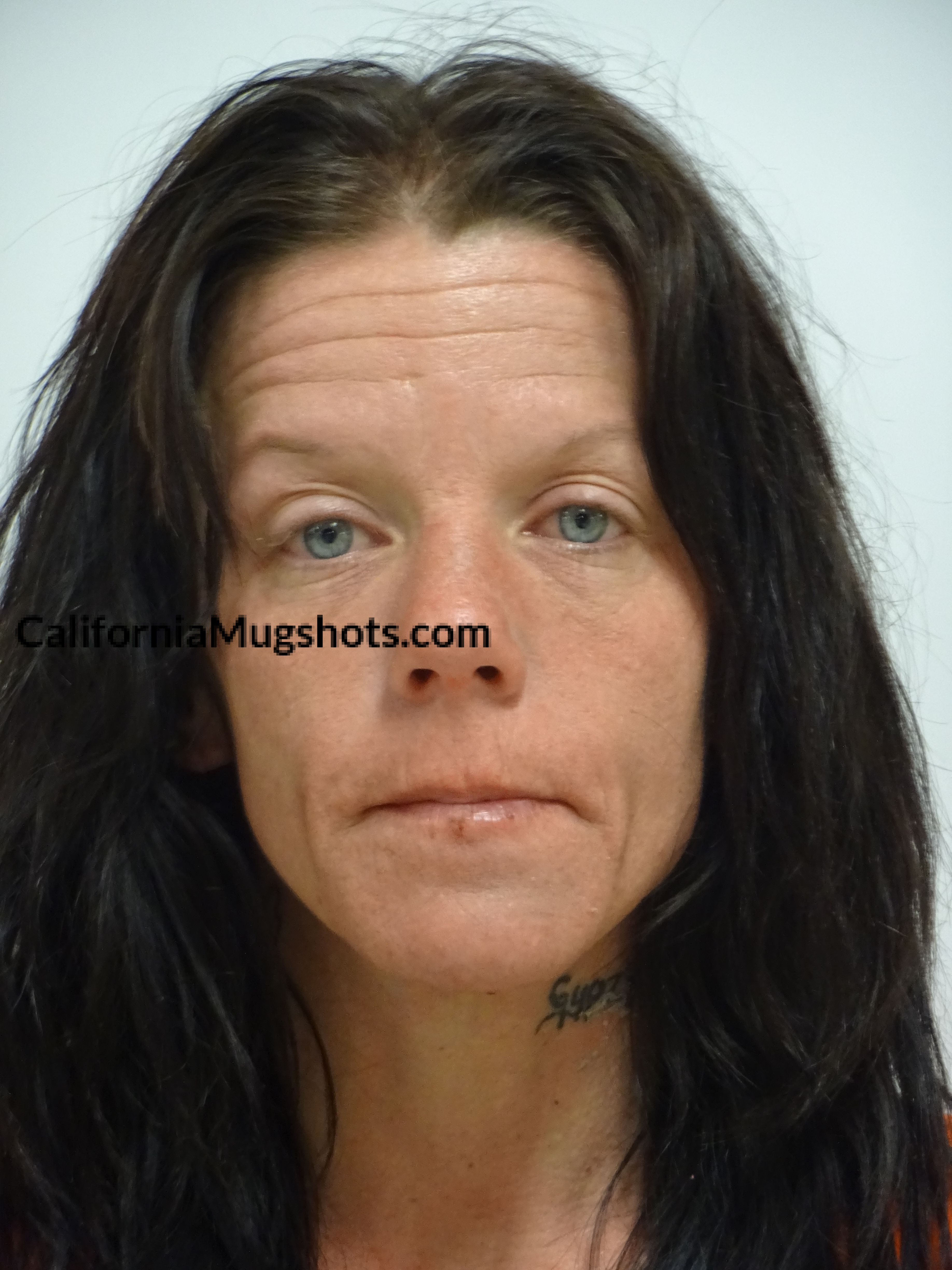 Sarah Jeffers arrested in Lake County,CA