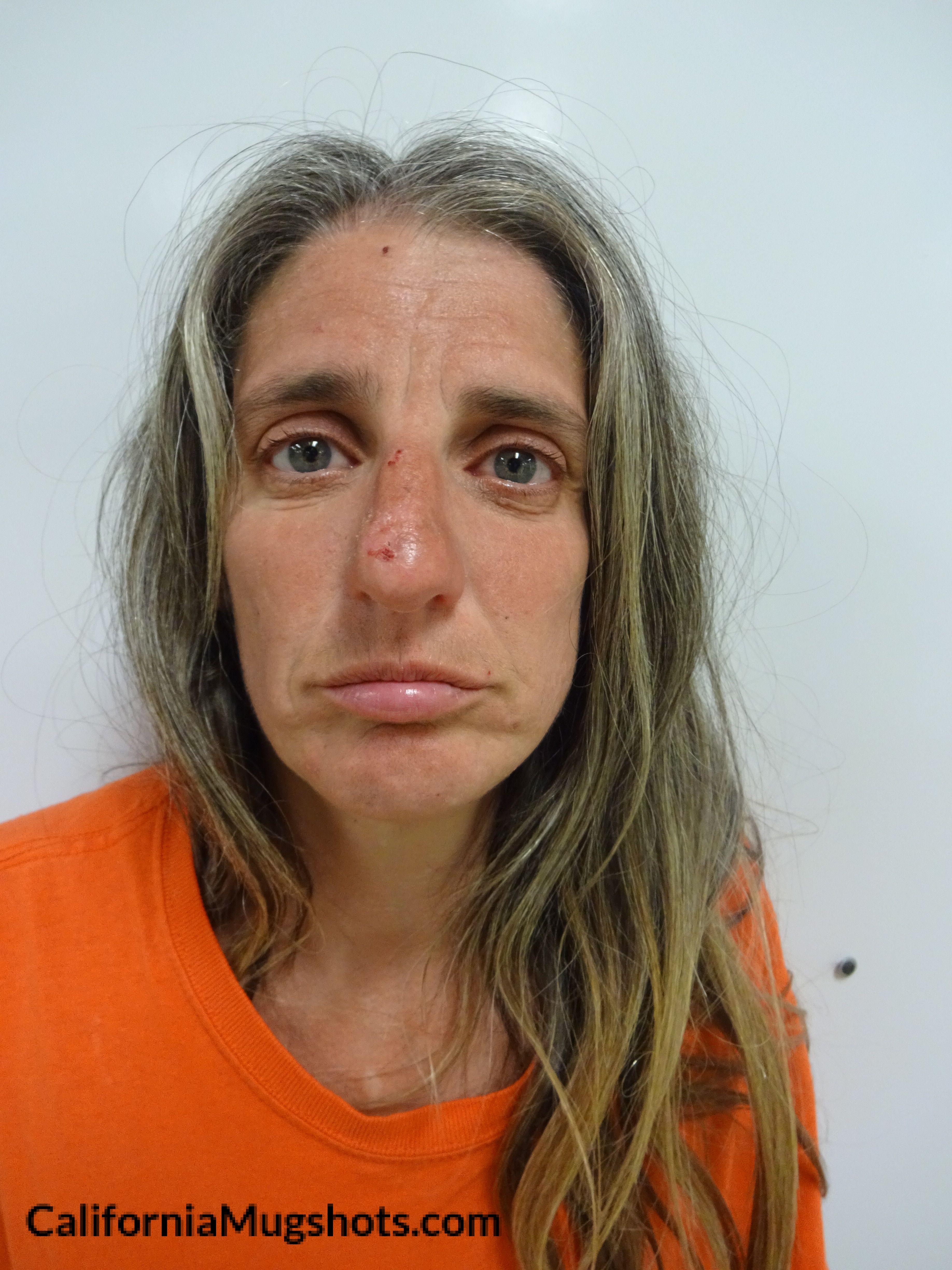 Sherry Lynn Lindsley arrested in Lake County,CA