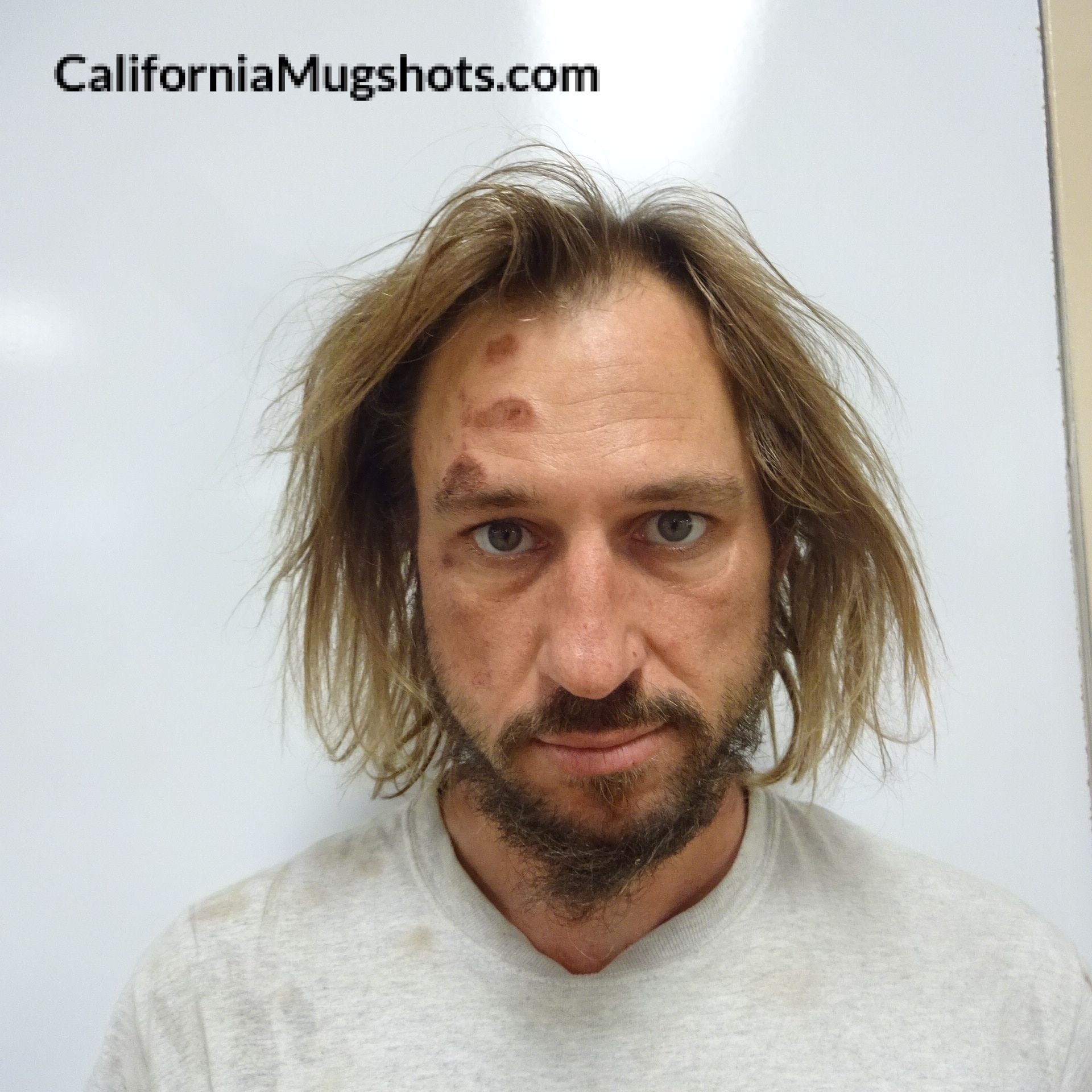 Todd Gary Osterhout arrested in Lake County,CA