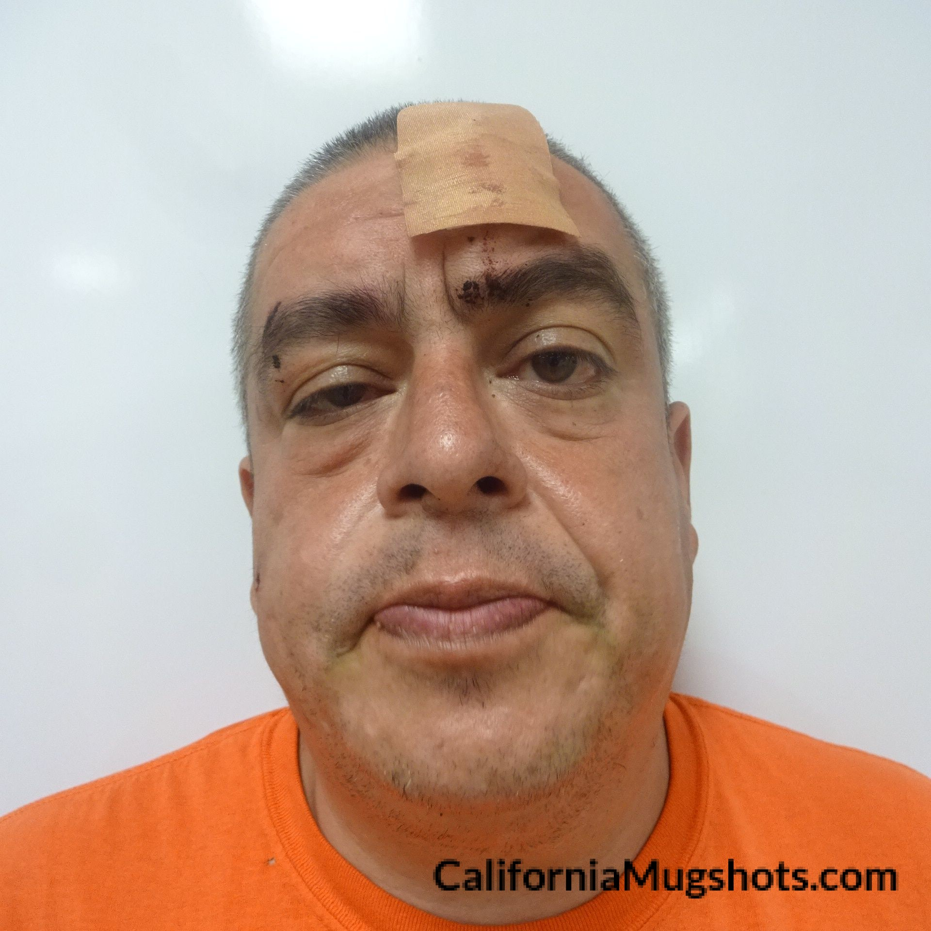 Jose Flores Pelayo arrested in Lake County,CA