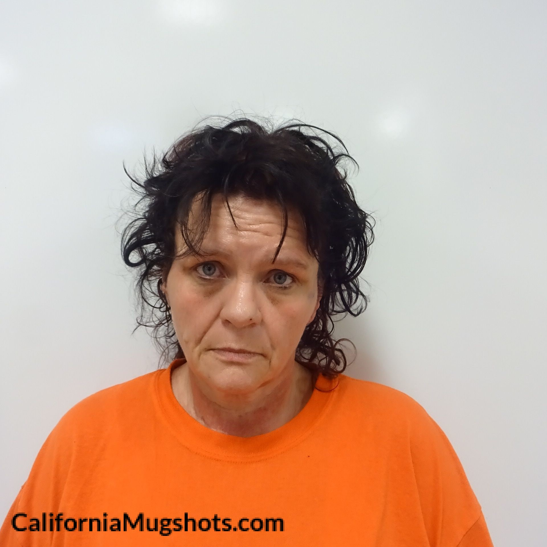 Melissa Ruth Lance arrested in Lake County,CA