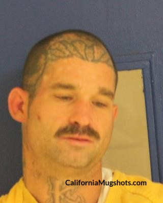Timothy P. Walsh arrested in Tehama County,CA